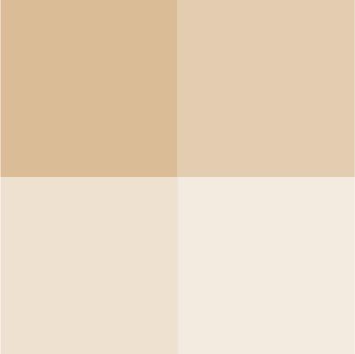 nuancier ivoire beige